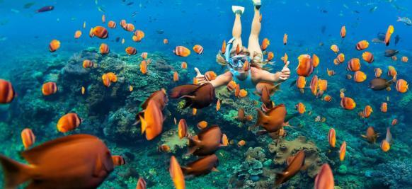 croisière luxe Antilles