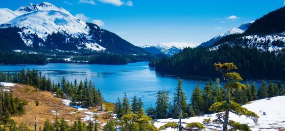 croisière haut de gamme Alaska