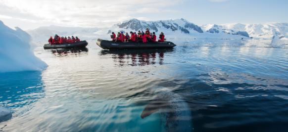 croisière haut de gamme en Antarctique