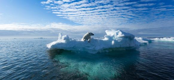 croisiere de luxe en arctique