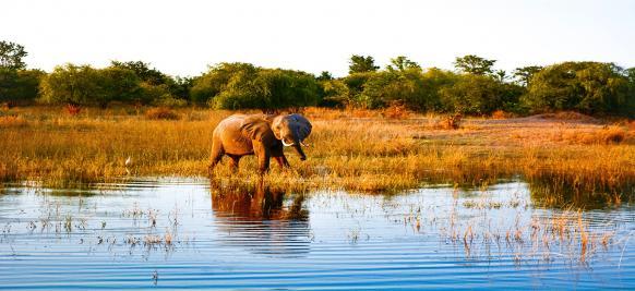 Afrique australe maritime 3